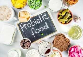 Prebiotic / Probiotic food